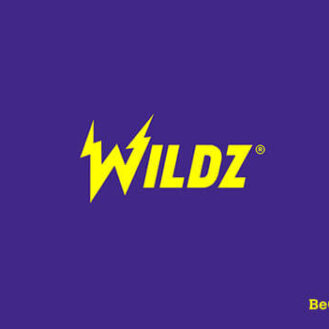 Wildz Casino Logo New
