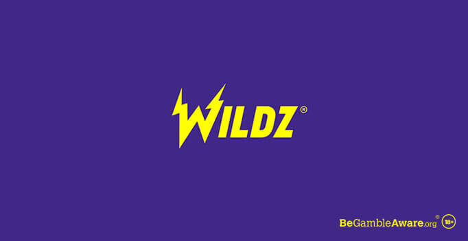 Wildz Casino Logo New